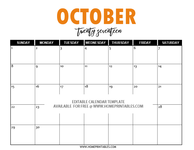 free editable 2017 calendar in word  pretty template