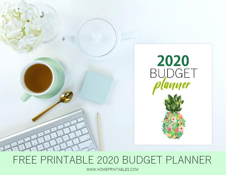 budget binder 2020 printable