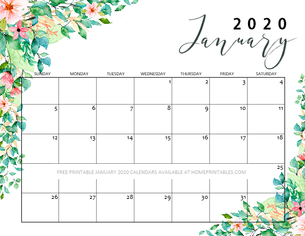 January calendar 2020 beautiful