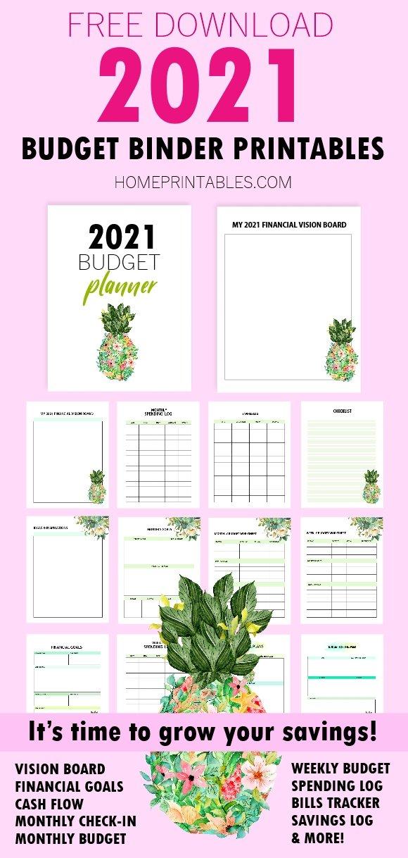budget binder 2021 free printable