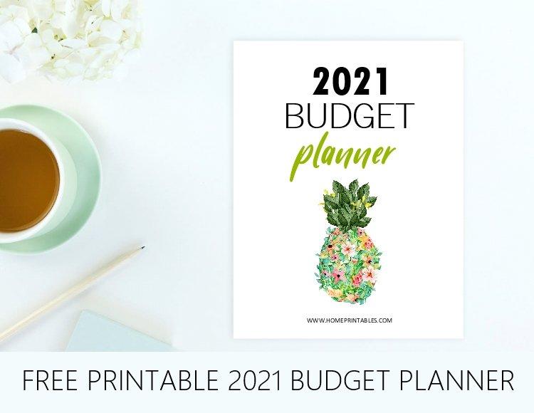 2021 Budget Binder