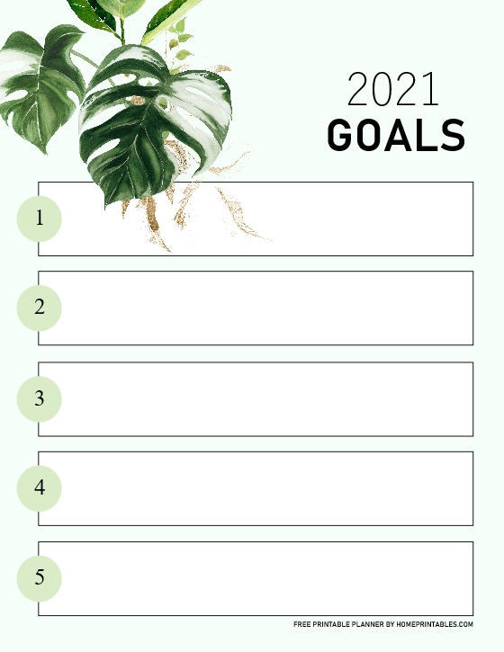 2021 Goals Planner Free Printable